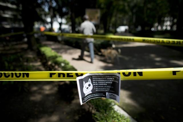 «Tant que l'enquête sur l'empoisonnement de chiens (...)... (PHOTO REBECCA BLACKWELL, AP)