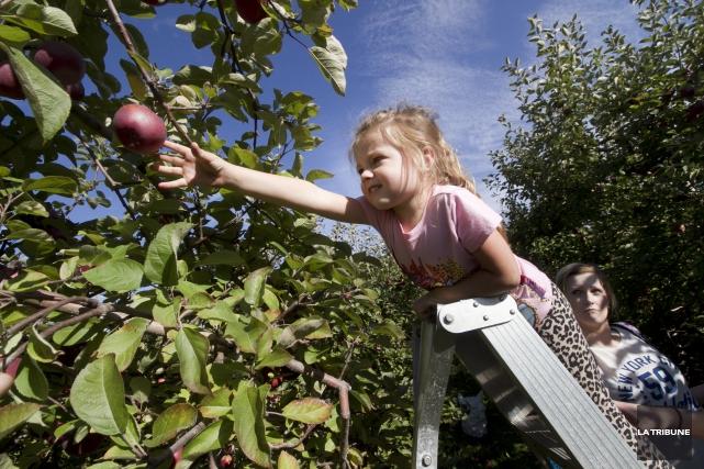 La petite Lexie Rivard s'amusait à récolter les... (Imacom, René Marquis)