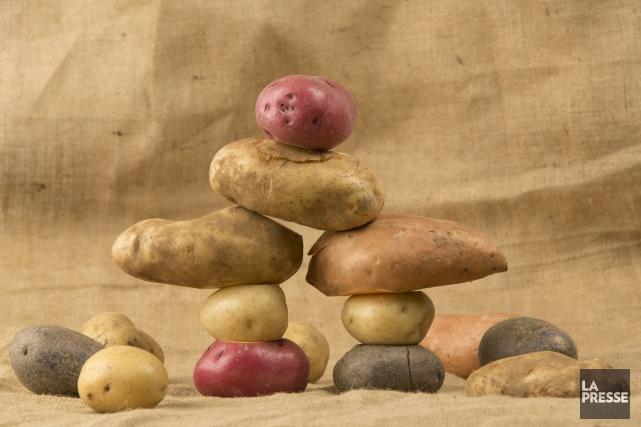 Les patates. On a un attachement aux patates. On met ça dans le pâté chinois,... (Archives, La Presse)