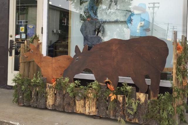 Plusieurs commerçants décorent leur vitrine aux couleurs du...