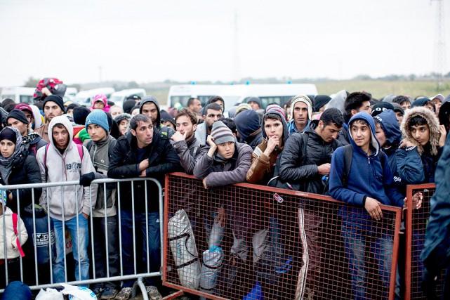 Des milliers de migrants font la file au... (AP, Marko Drobnjakovic)