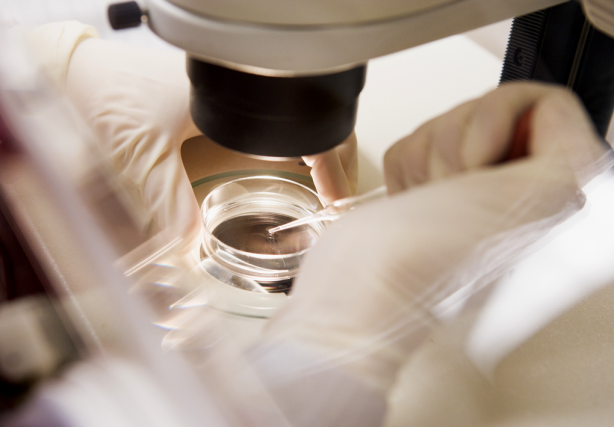 Le coût d'une naissance par fécondation in vitro... (PHOTO THINKSTOCK)