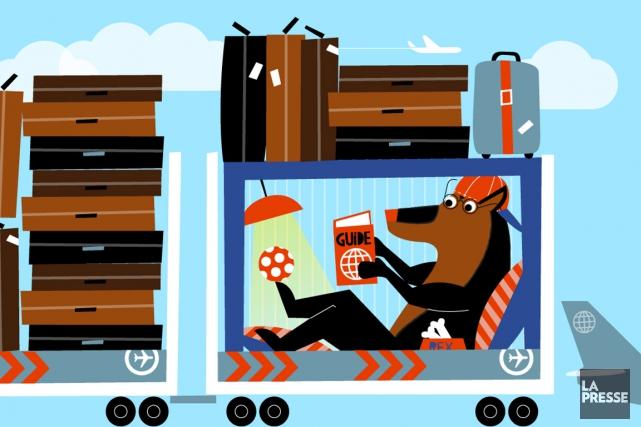 Emmener son chien en voyage, loin, loin de la maison, en l'embarquant dans un... (Illustration Julien Chang, La Presse)