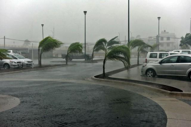 Dans l'État de Colima, où se trouve la... (PHOTO JONATHAN LEVINSON, AFP)