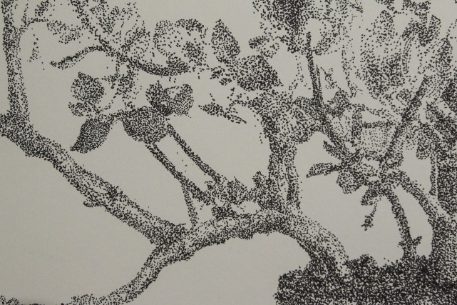 Le titre de l'exposition dit tout:Suite de paysages... (Patrick Woodbury, LeDroit)