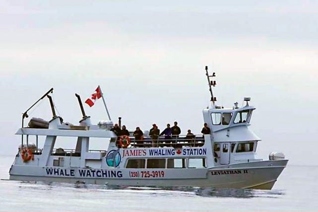 Le bateau qui a coulé est le Leviathan... (Photo Jamie's Whaling Station and Adventure Centres)