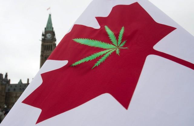 Les libéraux souhaitent légaliser lepotpour des motifs de... (PHOTOADRIAN WYLD, ARCHIVES LA PRESSE CANADIENNE)