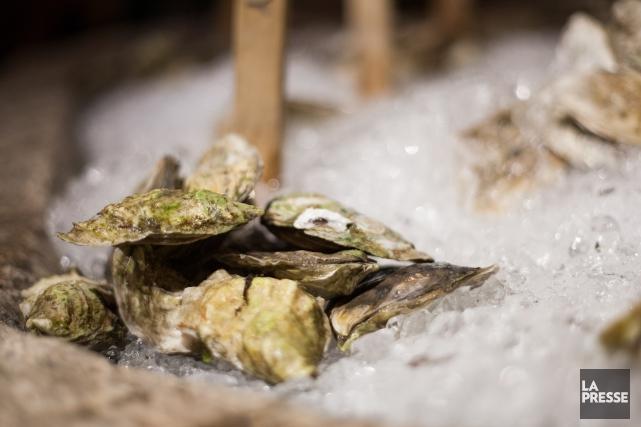 J'aurais aussi pu parler de cocon, mais «l'huître et le cocon», ça t'aurait... (Archives, La Presse)