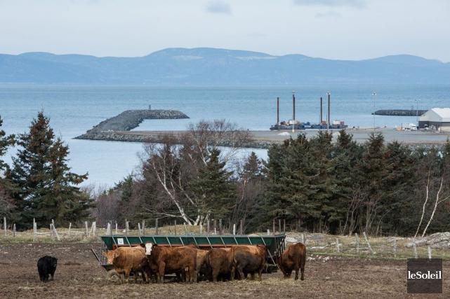 En renonçant à construire un port pétrolier au Québec, il sera plus difficile... (Photo Archives Le Soleil)