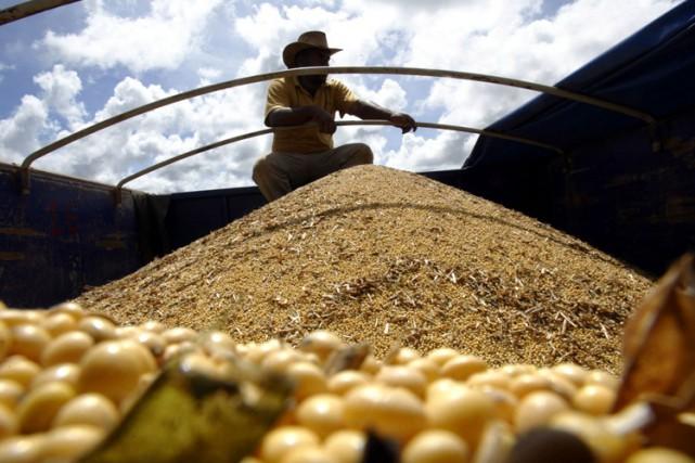 Un camion rempli de graines de soja dans... (ARCHIVES REUTERS)