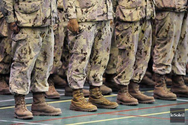Selon le rapport des Forces armées canadiennes, 225... (Photothèque Le Soleil, Patrice Laroche)