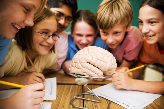 Comment s'assurer que les sciences jouent un rôle plus important dans les... (PHOTO THINKSTOCK)