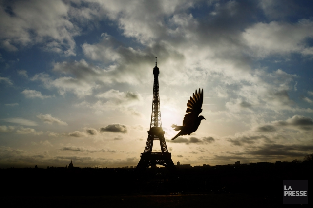 Ouverte lundi, fermée mardi, rouverte mercredi... la tour... (PHOTO DANIEL OCHOA DE OLZA, ARCHIVES LA PRESSE)