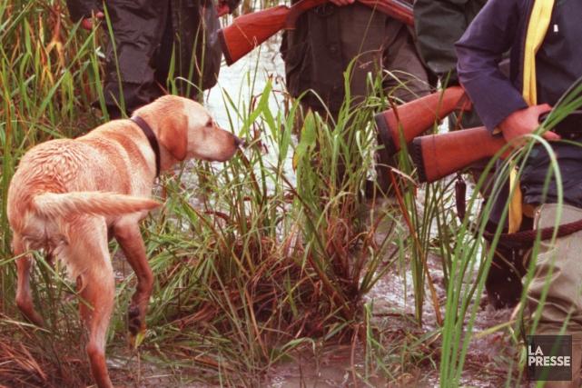 Un chasseur a été blessé lundi dans le sud-ouest de la France par un tir de... (Photo archives La Presse)