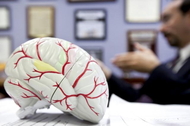 L'exposition précoce à une langue influence la façon dont le cerveau traite,... (PHOTO ARCHIVES THE NEW YORK TIMES)