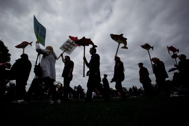 Le rapport affirme que les manifestations contre la... (Photo archives La Presse Canadienne)