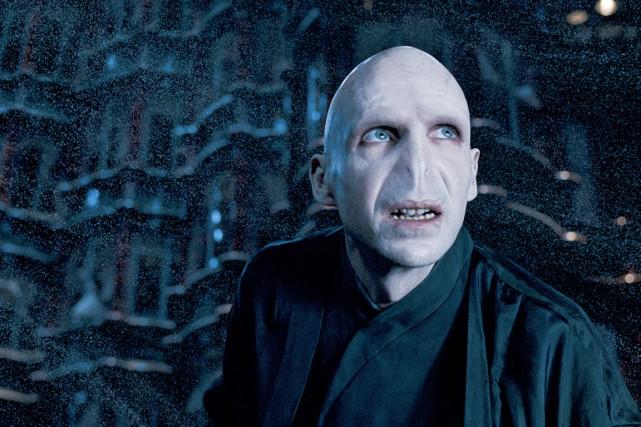 L'acteur britannique Ralph Fiennes incarne Voldemort dans Harry... (PHOTO FOURNIE PAR WARNER BROS)