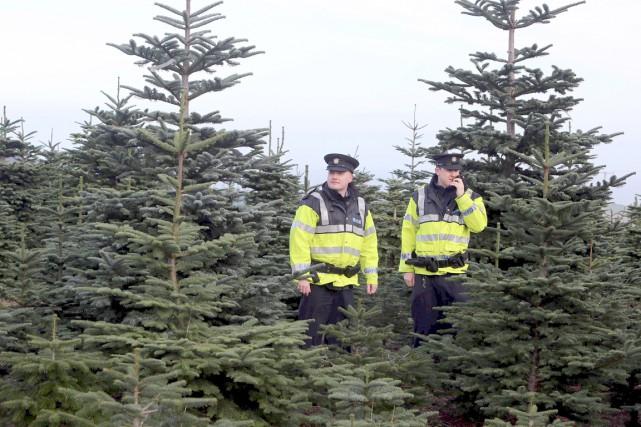 Des policiers montent la garde sur une ferme... (AFP, Paul Faith)