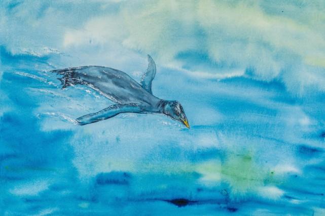 D'après l'ornithologue Gary Kaiser du Musée royal de... (Photo La Presse Canadienne)