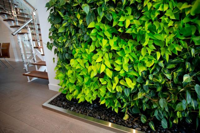 Ce mur végétal automatisé réalisé par EnviroZone est... (PHOTO ALAIN ROBERGE, ARCHIVES LA PRESSE)