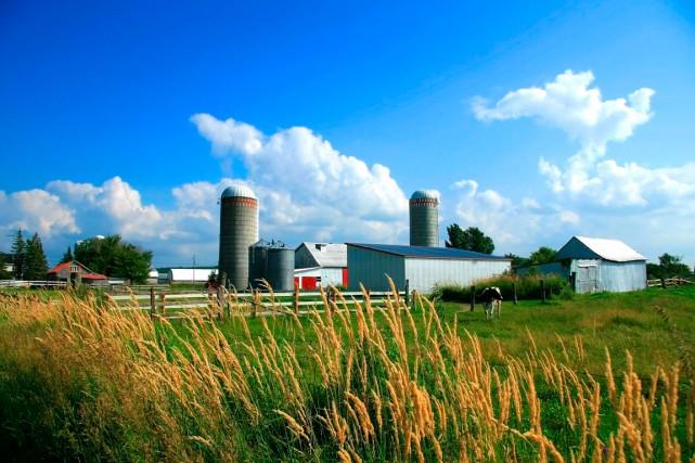 Selon l'auteur, pour maintenir les fermes familiales dans... (123RF/Sandra Cunningham)