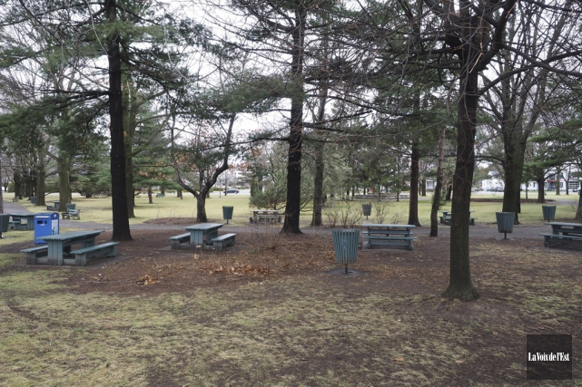 Le parc Pelletier, qui profitera d'une cure de... (Alain Dion, Archives La Voix de l'Est)