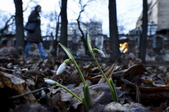 Si la ville de Moscou grelotte habituellement sous... (Agence France-Presse)