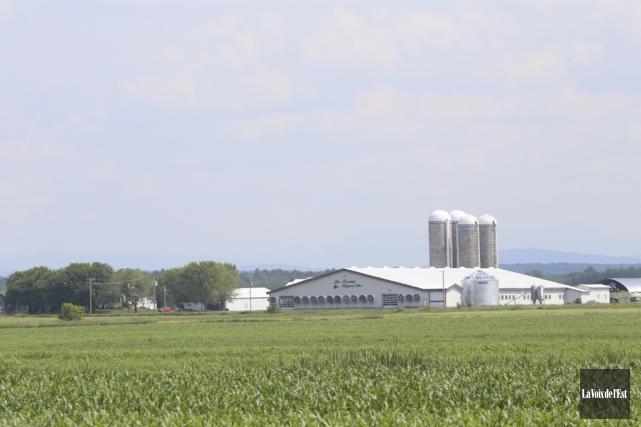La valeur des terres agricoles a augmenté de... (archives La Voix de l'Est)
