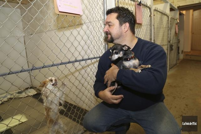 Carl Girard reste surpris du nombre de chiens... (Janick Marois, La Voix de l'Est)