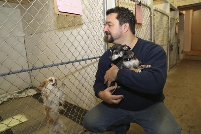 Carl Girard reste surpris du nombre de chiens... (photo Janick Marois)