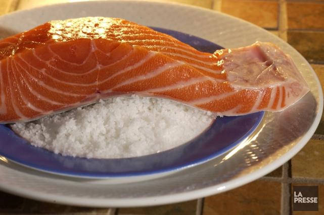 Du saumon transgénique pourra voir le jour.... (La Presse)