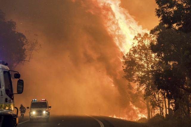 Le sinistre a dévasté environ 71 000 hectares... (AFP)