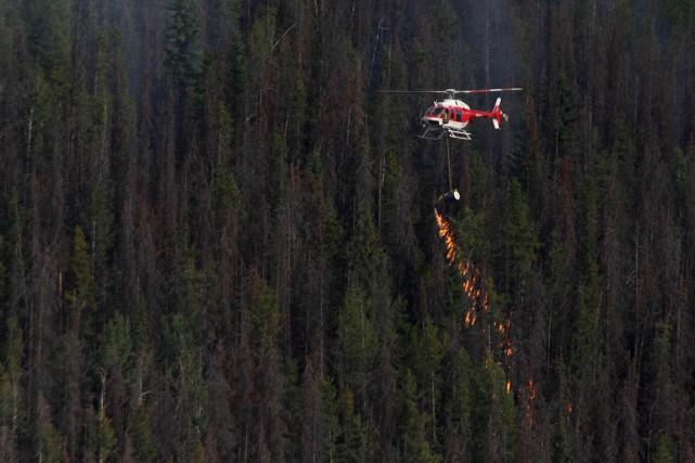 Les incendies de forêt dans les parcs nationaux du Canada ont atteint un record... (Photo La Presse Canadienne)