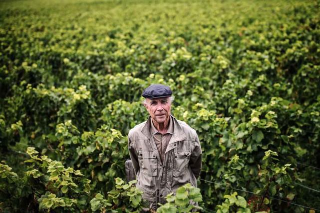 «La Bourgogne est unique dans le monde du... (PHOTO JEFF PACHOUD, AFP)