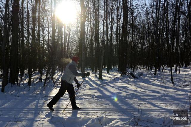 Ski de fond: ouverture de la saison (La Presse)
