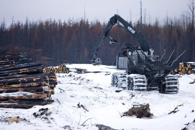 «L'État devra rapidement décider si l'industrie forestière est... (Photo Alain Roberge, archives La Presse)