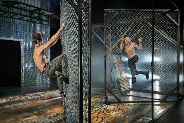 Voici à quoi ressemble la cage que le... (Photo courtoisie)