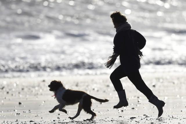 «Jeter des bâtons à votre chien peut être... (PHOTO REBECCA NADEN, ARCHIVES REUTERS)