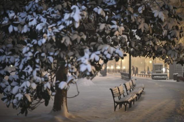 Le square Lafayette, près de la Maison-Blanche, était... (PHOTO MLADEN ANTONOV, AFP)