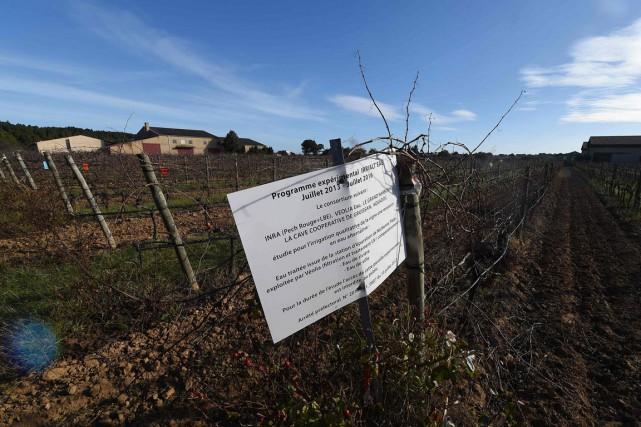 C'est ici, sur 16 hectares de terrain situé... (PHOTO AFP/ÉRIC CABANIS)