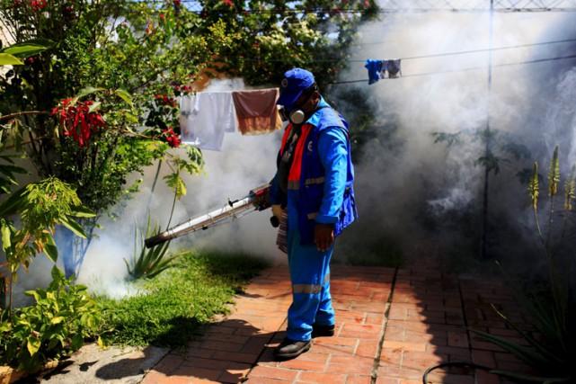 Selon l'Organisation mondiale de la santé, le Zika,... (PHOTO REUTERS)