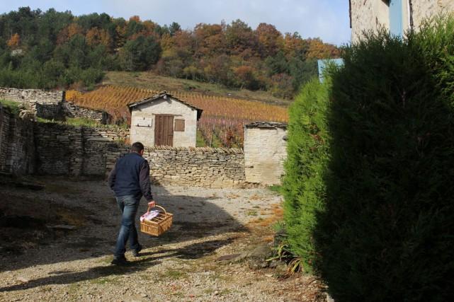 Olivier Lamy devant les vignes du cru Derrière... (PHOTO FOURNIE PAR CARL VILLENEUVE-LEPAGE)