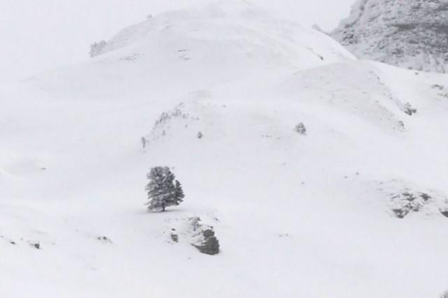 Avalanche Canada a soutenu que l'avalanche semblait avoir... (Photo d'archives, AFP)