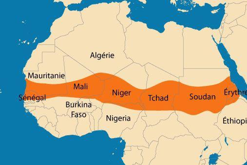 Depuis 2011, le Sahel, qui traverse l'Afrique d'est...