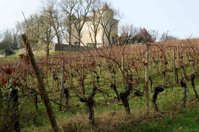 Les vins de la région de Cahors suscitent... (PHOTO AFP)