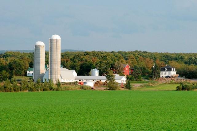 La clientèle agricole est plus réticente à consulter... (Photo 123rf/ Philippe Halle)