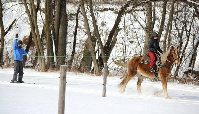 Accompagné de guides expérimentées, le ski joëring ou... (Courtoisie du Parc de la Gorge de Coaticook, Cathryn Nadeau)