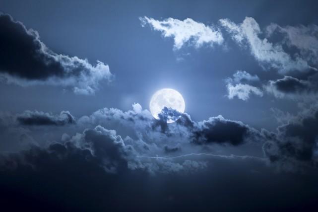 Même quand la pleine lune brille de tous... (123RF/Markus Gann)
