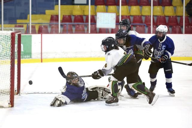 Le Thibault GM de Sherbrooke a blanchi les... (photo Julie Catudal)