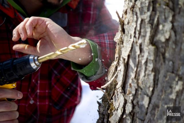 Un rapport commandé par Québec recommande un grand ménage dans l'industrie du... (Archives La Presse)